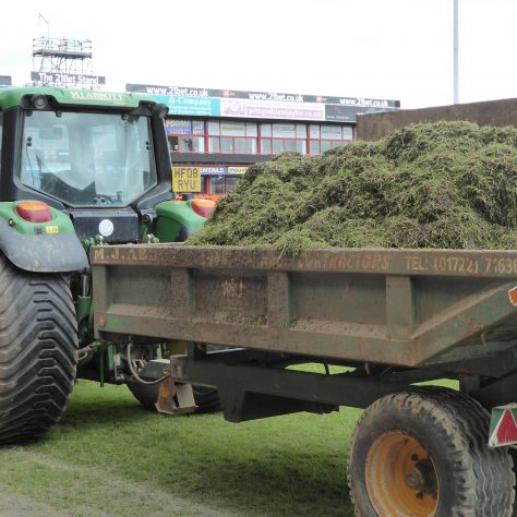 One of the many trailer loads of ground-up turf.